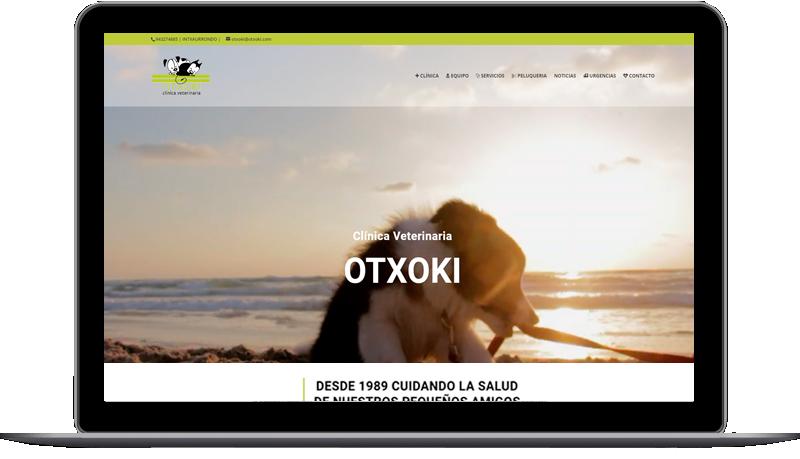 Diseño web: Otxoki