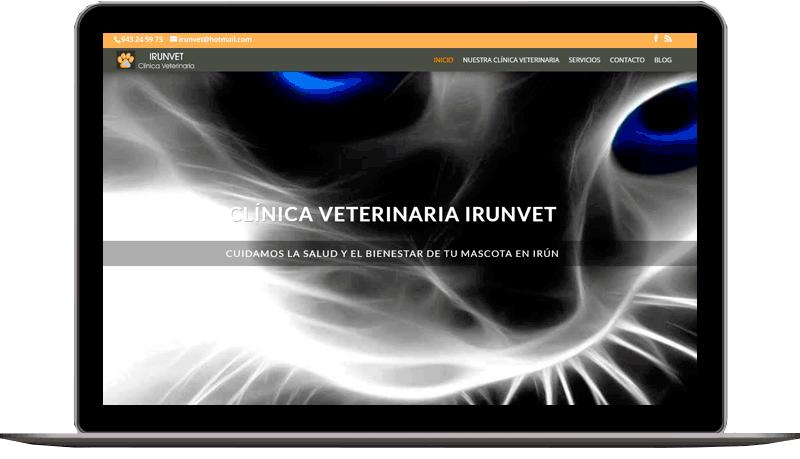 Diseño web: IrunVet