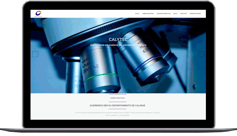 Diseño web: Calytec